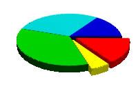 Kırmızı ve sarı renkli dilimleri ayrılmış bir pasta grafik